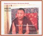 Embracing Patience, Destroying Anger (CD)