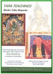 The Twenty-One Praises of Tara (DVD)