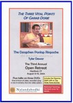 The Three Vital Points of Garab Dorje (DVD)