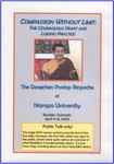 Compassion Without Limit: The Courageous Heart and Lojong Practice (DVD Public Talk)