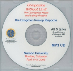 Compassion Without Limit: The Courageous Heart and Lojong Practice (MP3)