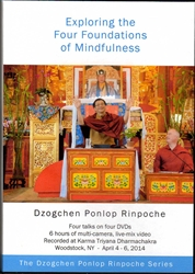 Exploring the Four Foundations of Mindfulness (DVDs)
