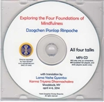 Exploring the Four Foundations of Mindfulness (MP3CD)