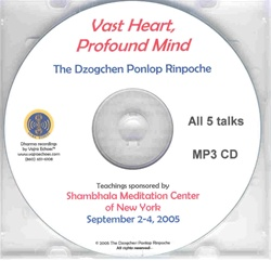 Vast Heart, Profound Mind (MP3 CD)