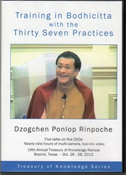 Training in Bodhicitta with the Thirty Seven Practices (DVDs)