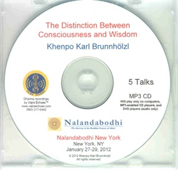 The Distinction Between Consciousness and Wisdom (MP3CD)