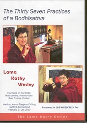 The 37 Practices of a Bodhisattva (DVD)