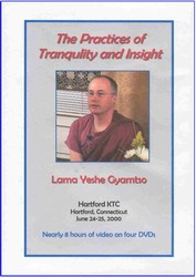 The Practices of Tranquility and Insight (DVD)