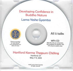 Developing Confidence in Buddha Nature (MP3)