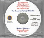 Compassion Without Limit: The Courageous Heart and Lojong Practice (CD Public Talk)