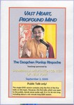 Vast Heart, Profound Mind (DVD Public Talk)