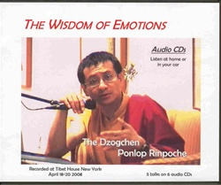 Wisdom of Emotions (CDs)