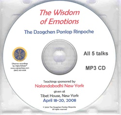 Wisdom of Emotions (MP3CD)