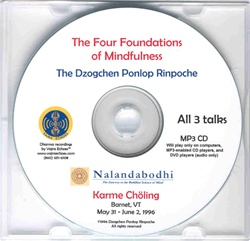 The Four Foundations of Mindfulness (MP3)