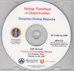 Seizing Transitions as Opportunities (MP3CD)