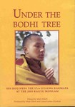Under The Bodhi Tree (DVD)