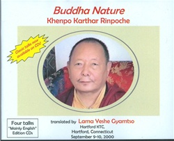 Buddha Nature (CDs)
