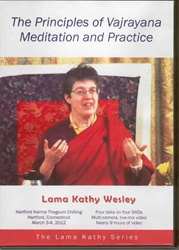 The Principles of Vajrayana Meditation and Practice  (DVDs)