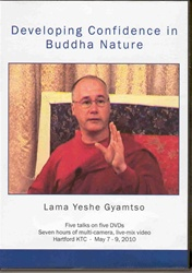 Developing Confidence in Buddha Nature (DVD)